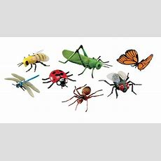 Learning Resources Assorted Jumbo Insects, Set Of 7