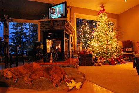 pictures of christmas decorations in homes awesome and beautiful lighting christmas tree decoration ideas