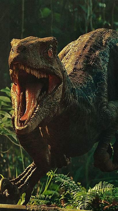 Jurassic Indominus Rex Fallen Kingdom Dinosaur Park