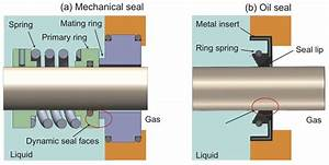 A  General View Of Mechanical Seal   B  General View Of
