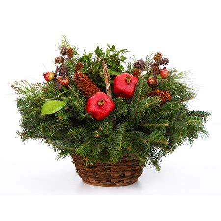 real christmas trees delivered fresh  fraser fir