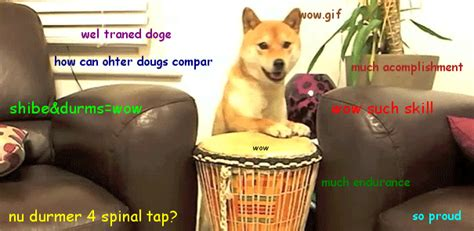 Doge Meme Font - doge meme face copy paste text