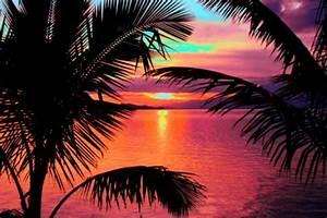 画像 : 【海・ビーチ】ちょっぴりおしゃれな画像集 - NAVER まとめ