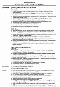 old fashioned security architect resume objective frieze With issp template
