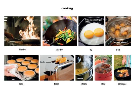 cuisine meaning steam 2 verb definition pictures pronunciation and
