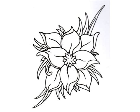 Jasmine Flower Drawing Tattoo At GetDrawings.com