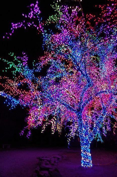 magical purple tree lights