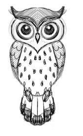 simple owl drawings black and white 25 best owl drawings ideas on owl sketch