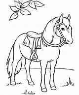 Horse Coloring Pages Preschool Printable Kindergarten sketch template