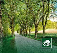 Abschreibung Immobilien Eigennutzung : start sachwert experten ~ Lizthompson.info Haus und Dekorationen