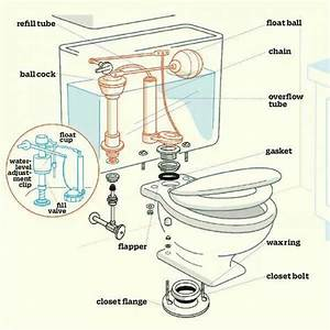 Anatomy Of A Toilet  Homerepair  Bathroomtoiletleak
