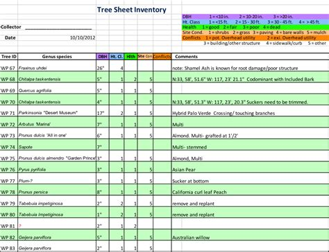 Tree Inventory Template Gallery - Template Design Ideas