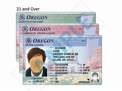 Oregon License Driver Licenses Drivers Features Etched