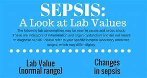 Carb Chart Sepsis Handout For Nurses Sepsis A Look At Lab Values