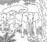 Coloring Elephant Colouring Elephants Stencil Peanut Olifanten Templates Drawing Mother Outline Disney sketch template