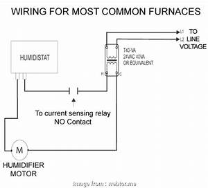Nest Humidifier Wiring Diagram Professional Carrier