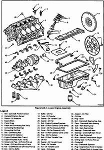 Holden Commodore Ls1 Engine Layout
