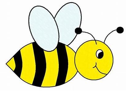 Bee Clip Bumble Clipart Honey Cartoon Flowers