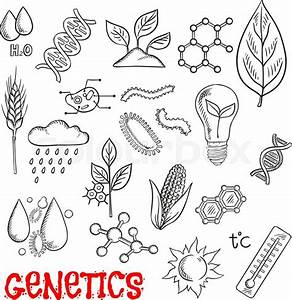 Agriculture And Genetic Technology