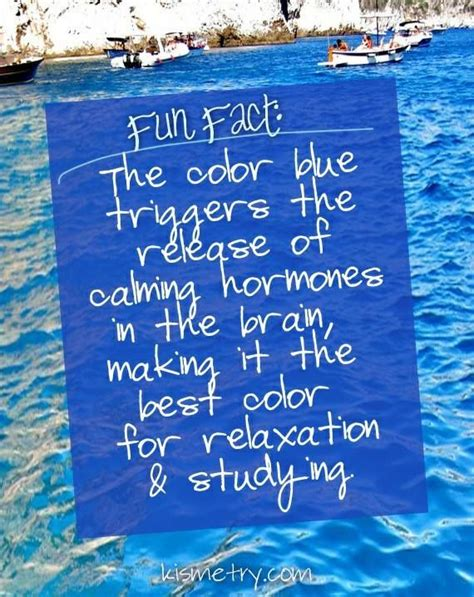 most relaxing color fact the color blue is the most relaxing color