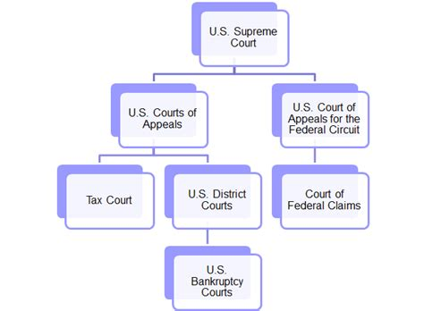 Court Jurisdiction Tax Issues Appellate Structure