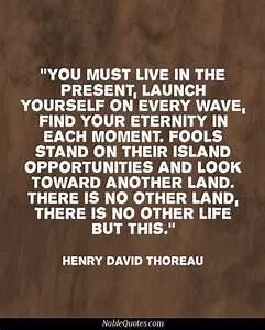 Walden Henry Da... Thoreau Book Quotes