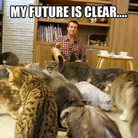 Crazy Cat Man Meme - and that s to be the best crazy cat dude in the world kittyworks