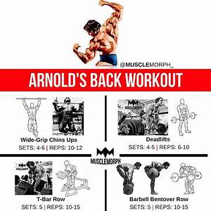 Back Workout Arnold Schwarzenegger Musclemorph S     Musclemorphsupps Com  With Images