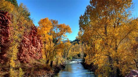 Beautiful River In Jungle Wallpaper   HD Wallpapers