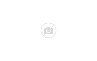 Pottery Polish Bowl Unikat Scalloped Serving