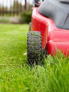4 Common Lawn Mowing Issues And How To Deals With Them