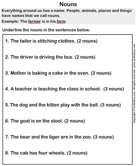sentences  nouns worksheet turtle diary