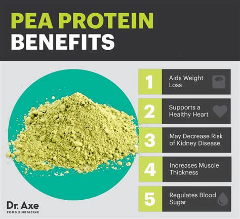 pea protein   dairy muscle builder dr axe