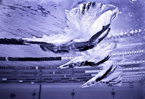 home  sports pictures olympic swimming wallpaper