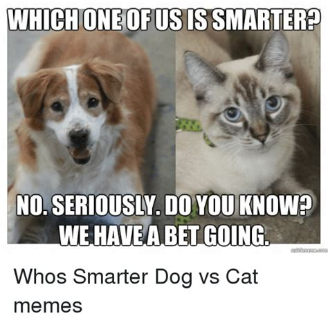 Dog And Cat Memes - which oneofusissmartered we have a betgoing whos smarter dog vs cat memes cats meme on sizzle