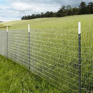 Günstiger Zaun Für Hund : a fence can provide privacy security pet containment and more learn how to choose the right ~ Frokenaadalensverden.com Haus und Dekorationen