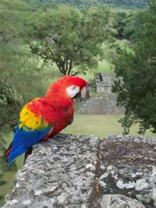 About Honduras Culture