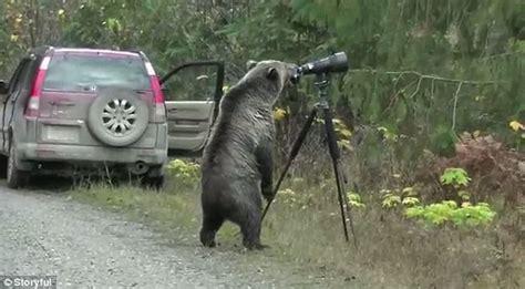 Canada's Newest Wildlife Photographer  A Grizzly Bear