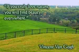 Beauty, Everywhere