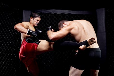 mixed martial artists fighting kicking rocmont