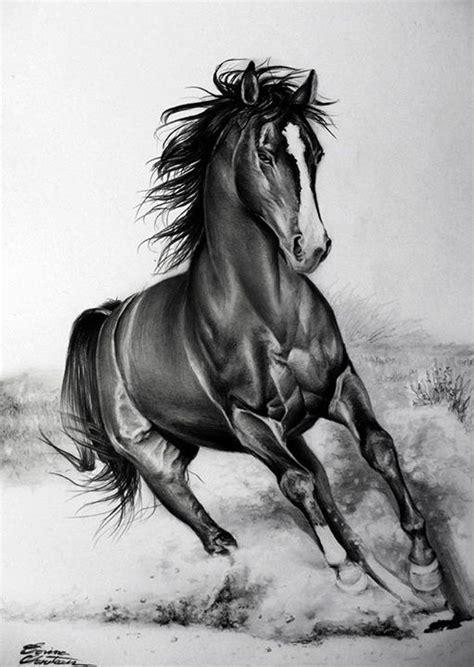 running horse pencil drawing horses horse pencil
