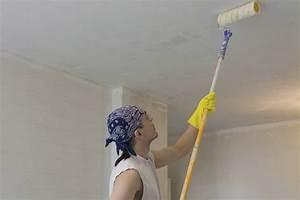 Peindre Un Plafond Facilement : peindre un plafond facilement amazing peindre mur ~ Premium-room.com Idées de Décoration