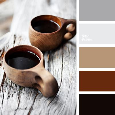 color and coffee coffee color color palette ideas