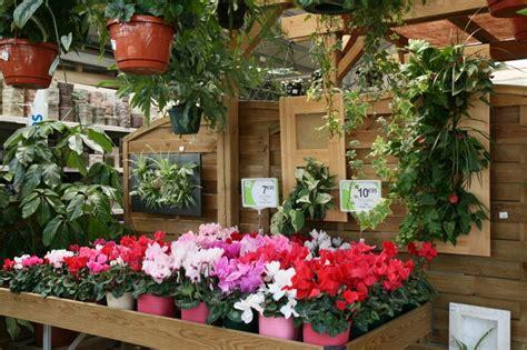 bureau de poste besan輟n plantes grasses fleuries interieur 28 images les serres de segrez jardinerie rurale producteur 01 64 25 65 60 catalogue nos produits