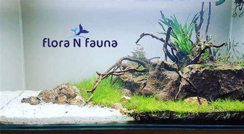 Fauna Aquascape by Flora N Fauna Misc Aquascaping Professional Size 30 X 30