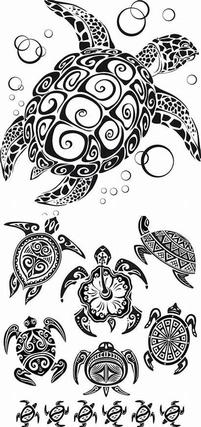 Vector Turtle Tattoo Tattoos Tribal Graphics Sea