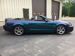 2004 Ford Mustang Mystichrome Cobra for sale: photos, technical specs, description