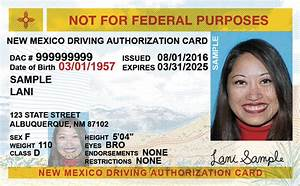 New Mexico Driver U0026 39 S License Application And Renewal 2020