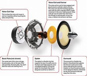 525 Best Wood Speakers Ideas Images On Pinterest