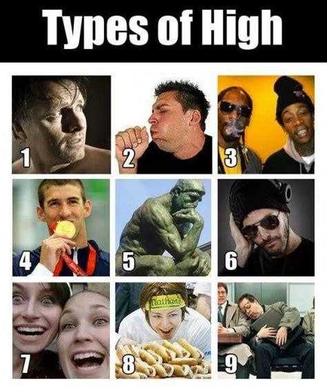 Different Types Of Memes - 9 best images about stoner motivation on pinterest smoking weed bud and ganja